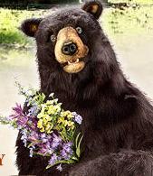Zeno Spring Flowers