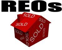 Reo-properties