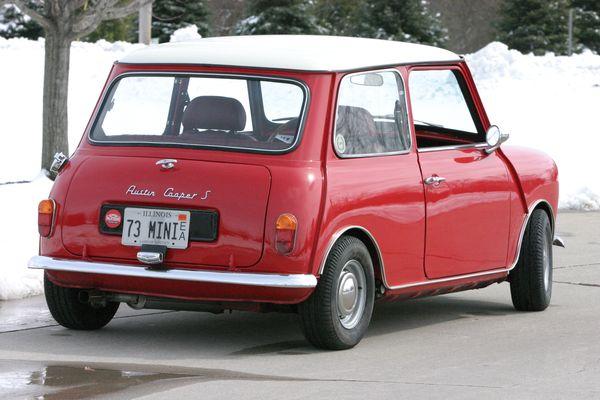 Winter Mini  Rear
