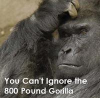 800_lb_gorilla
